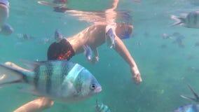 Barnbad i havet med fisken Dykapparatdykning i maskeringar Arkivfoto