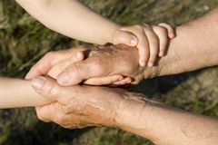 barnbarnfarmorhänder Arkivfoton