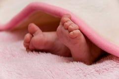 barnben s Fotografering för Bildbyråer
