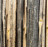 Barnboard background Stock Photos