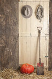 Barndoor with hat, rope and pumpkin Royalty Free Stock Photo