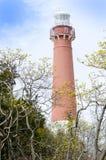 Barnegat Leuchtturm Stockbild