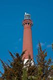 Barnegat Light Royalty Free Stock Image