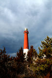 Barnegat lighthouse. A view of the top of the Barnegat lighthouse in Barnegat, New Jersey, rising above the trees Stock Images