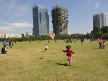 Barnen flyger drakar. Fotografering för Bildbyråer