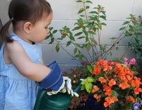 Barnet bevattnar en trädgård Arkivbilder