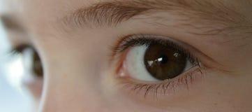 barnet eyes s Royaltyfri Fotografi