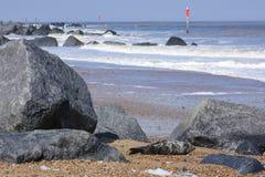 Barnet förseglar att vila på stranden, Norfolk, UK arkivbild