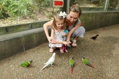 Barnet fostrar och den lilla dottern som tycker om med papegojor utanför i Thailand royaltyfri bild