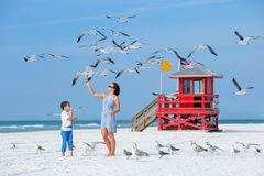 Barnet fostrar och hennes matande seagulls för sonen på Royaltyfri Bild