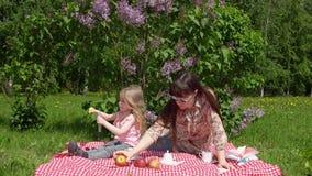 Barnet fostrar och litlledottern på en vårpicknick bredvid en blomstra lila stock video
