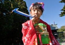 barnet går den japanska kimonosan shichien Arkivfoton