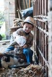 Barnet ger sig mjölkar till katter royaltyfri bild