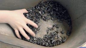 Barnet handen för ` som s rotas, i tenn-fyllt kan med gammalt, spikar och att spela pojken ` s gömma i handflatan arkivfilmer