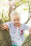 Barnet klättrar ett träd i ottan på en sommardag Arkivfoton