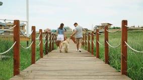 Barnet kopplar ihop att gå bort med apportörhunden, träbron, landet som är slowmotion stock video