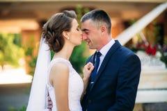 Barnet kopplar ihop, bruden och brudgummen som går och tycker om deras bröllopdag solsken Sommar Arkivfoto