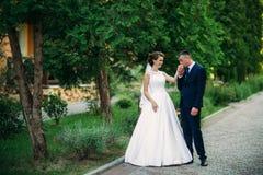 Barnet kopplar ihop, bruden och brudgummen som går och tycker om deras bröllopdag solsken Sommar Royaltyfri Fotografi