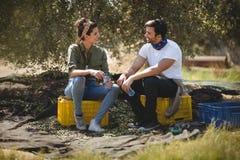 Barnet kopplar ihop samtal, medan sitta på den olivgröna lantgården Arkivbilder