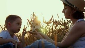 Barnet och hans moder sitter bland de mogna öronen av vete i fältet och spelar med en liten träväderkvarn _ lager videofilmer