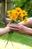 Barnet räcker att ge sig blommor till pensionärens hand Arkivbild