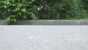 Barnet rider en sparkcykel i en sommar parkerar Närbild arkivfilmer