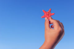 Barnet rymmer den röda sjöstjärnan Barnhänder med sjöstjärnan Blåtthav, Sky & moln Royaltyfria Foton