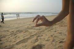 Barnet rymmer försiktigt räkan i hans fingrar mot bakgrunden av ett enormt hav på solnedgången royaltyfri foto