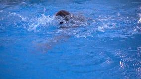 Barnet simmar i simbassäng stock video