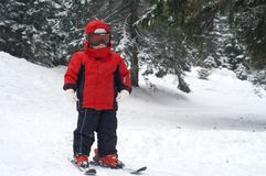 barnet skidar standing Fotografering för Bildbyråer