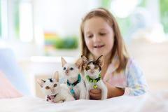 Barnet som spelar med, behandla som ett barn katten Unge och kattunge arkivbilder