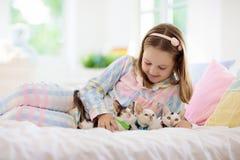 Barnet som spelar med, behandla som ett barn katten Unge och kattunge arkivbild