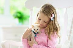 Barnet som spelar med, behandla som ett barn katten Unge och kattunge royaltyfria bilder