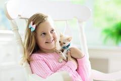 Barnet som spelar med, behandla som ett barn katten Unge och kattunge arkivfoton