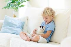 Barnet som spelar med, behandla som ett barn katten Unge och kattunge fotografering för bildbyråer