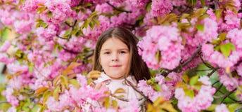 Barnet tycker om liv utan allergi Sniffa blommor Bli av med den s?songsbetonade allergin Flicka som tycker om blom- arom pollen royaltyfria bilder