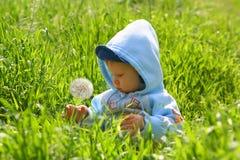 barnet undersöker naturen Arkivbild