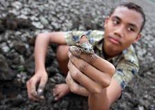 Barnet visar grodor som han fångade i behållaren Kerto Sragen, centrala Java Indonesia royaltyfri bild