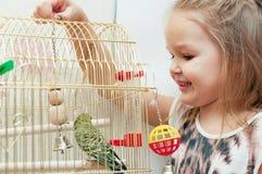 Barnflicka som spelar med budgies Royaltyfri Foto