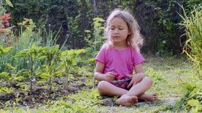 Barnflickan äter jordgubbar som sitter på gräset på lantgården lager videofilmer