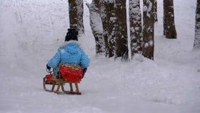 Barnflickan på träsläden går ner från en snöig kulle sörjer in Forest Slow Motion arkivfilmer