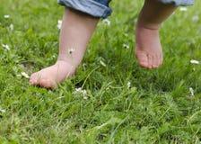 Barnfot på gräs Royaltyfri Fotografi