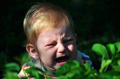 barngråt Fotografering för Bildbyråer