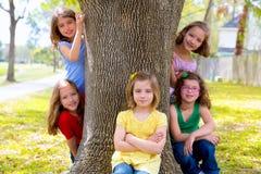Barngrupp av systerflickor och vänner på trädstammen Arkivbild