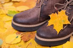 Barngymnastikskor på färgrik bakgrund av Autumn Leaves royaltyfri fotografi