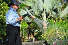 Barnkammare för trädgård för ägareoperatörsväxt som vattnar med slang bevattna växter Royaltyfri Bild