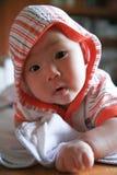 Barnkrypande fotografering för bildbyråer
