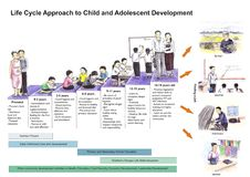 Barnlivcirkulering arkivbilder