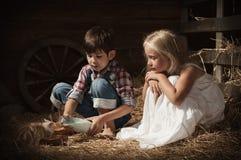 Barnmatningskattungar mjölkar royaltyfri bild
