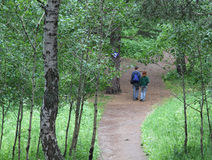 Barnpar som går skogen Arkivfoton